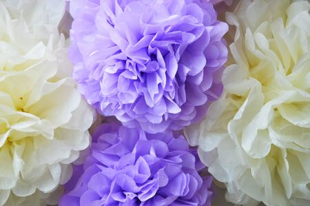 Paper POM-poms. Paper flowers, peonies. a gentle background for the design.