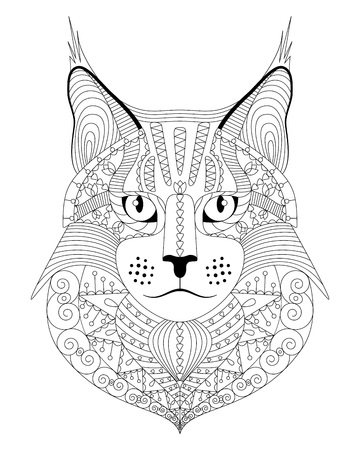 Hand drawn maine coon cat with ethnic doodle pattern. Antistress coloring page for adults. Vector illustration, isolated on white