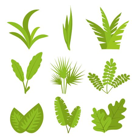 Plants, leaves, branches, bushes and pots set Flat vector illustration Vettoriali