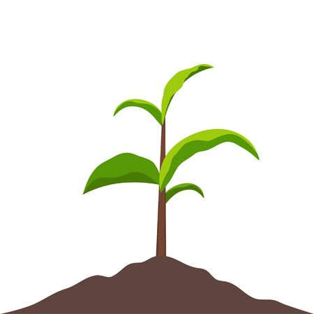 Sprout growing in soil. Small sprout with green leaves. Symbol of development, organic agriculture, natural products. Vector gardening plant, symbol of ecology.Flat vector illustration