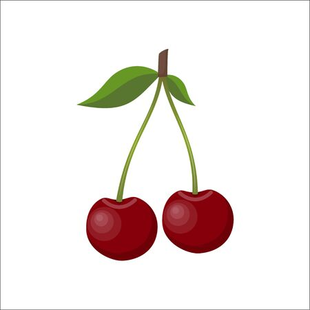 Cherry. Fresh berries isolated on white background, vector illustration in flat style