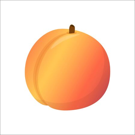 Peach. Sweet fruit, isolated on white background, vector illustration in flat style Illustration