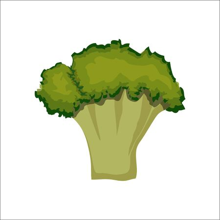 Broccoli icon. Flat illustration of broccoli vector icon isolated on white background Illustration
