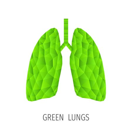 alveolus: Polygonal green lungs isolated on white. Abstract low poly triangle ecology concept. Human internal organ. Medical vector icon. Illustration