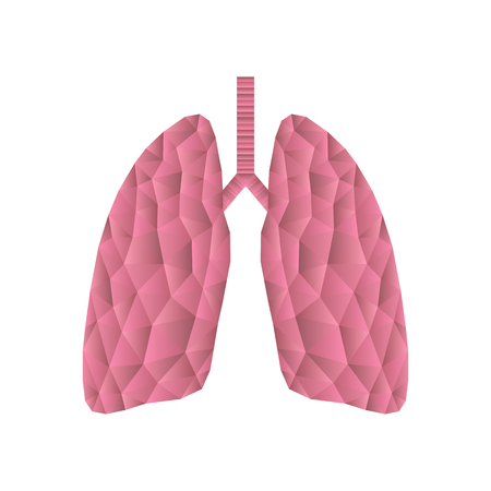 alveolus: Polygonal  lungs isolated on white. Abstract low poly triangle concept. Human internal organ. Medical vector icon.