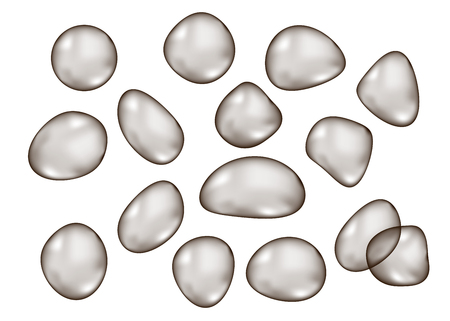 Irregular shape  transparent  black  glossy  bubbles   isolated on white  background. Dark gray sphere. Vector  drop  texture.