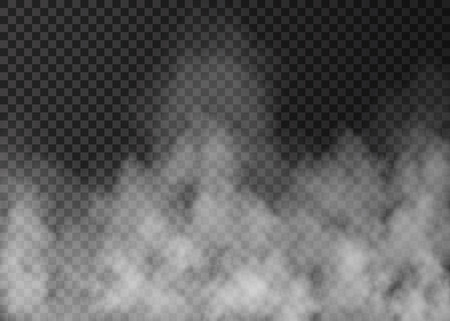 White fog isolated on transparent background.   Realistic  vector fire smoke  or steam  texture .