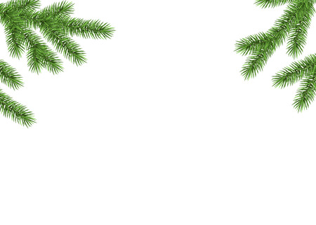Xmas background with fir  branch. Green spruce. Realistic Christmas tree. Vector illustration for  cards, banners, flyers, New year party posters.