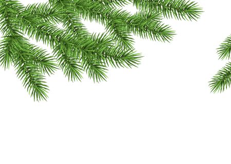 Xmas background with spruce branch. Green fir. Realistic Christmas tree. Vector illustration for  cards, banners, flyers, New year party posters. Illustration
