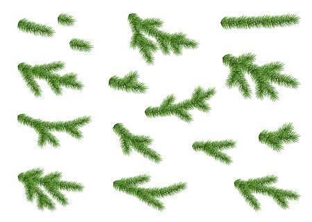 スプルースの枝が白い背景で隔離のコレクションです。緑のモミ。リアルなクリスマス ツリー。ベクトル イラストのクリスマス カード。  イラスト・ベクター素材