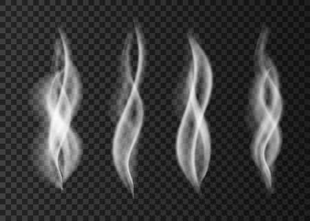 White smoke isolated on transparent background. Steam from a cup of coffee or tea. Realistic vector illustration.