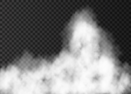White fire smoke isolated on transparent background. Vettoriali
