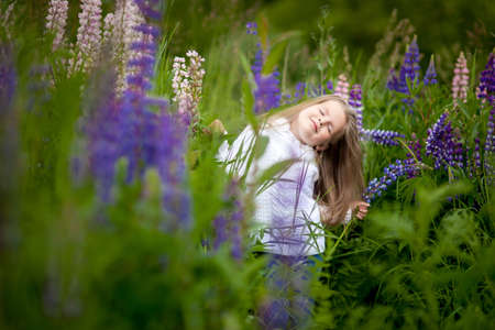 Girl with a bouquet in the hands of purple flowers lupine field Purple flowers lupine field sunset