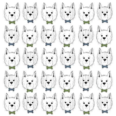 scottie: west highland white terrier scetch pattern. Can be used like post card, background or banner Illustration
