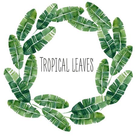 Hand getekende aquarel zomer Tropische bladeren tarwe. Kan gebruikt worden voor logi