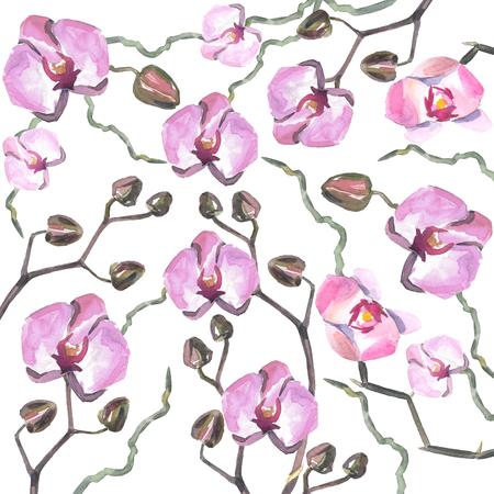 Hand getekend aquarel orhid geklets. Kan gebruikt worden voor uitnodiging tot de bruiloft of achtergrond