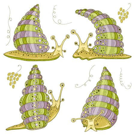 Set with cute Achatina fulica snails. Funny snails for for decorating food packaging or cosmetics Vecteurs