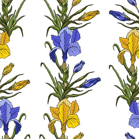 Seamless background with violet and yellow Irises and leaves on white. Vector botanical illustration. Vintage endless pattern with hand-drawn Irises flower. 일러스트