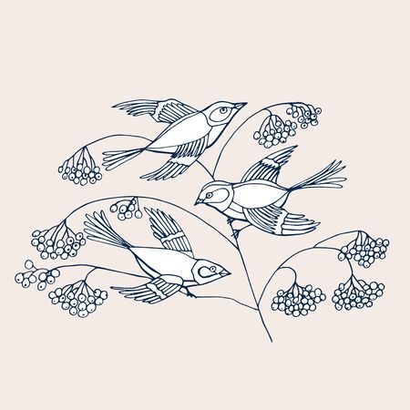 Hand drawn decorative birds isolated on white. A birds sits on a rowan branches with berries. Vector illustration with cute bird for cards, design, fabric, textile, coloring book. Çizim