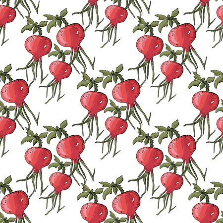 Seamless pattern with hand drawn rose hip. Fruit background. Vector illustration.