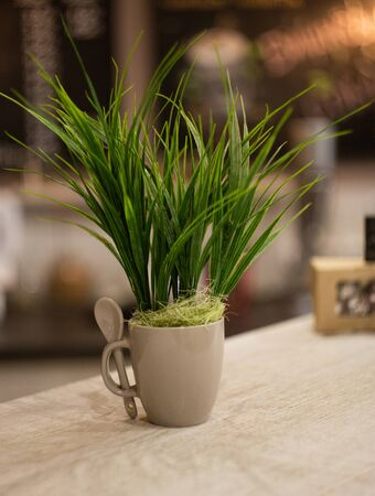 Artificial green grass in a white cup. 版權商用圖片