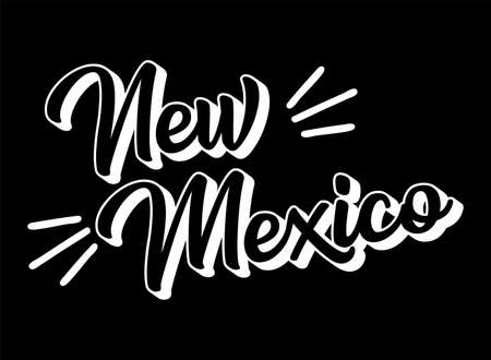 Hand sketched NEW MEXICO text. 3D vintage, retro lettering for poster, sticker, flyer, header, card. Vector Illustratie