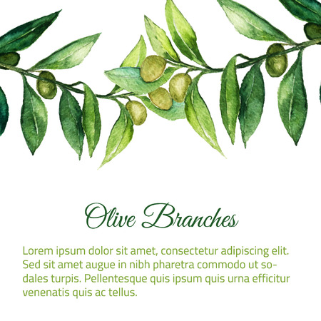Vector watercolor hand drawn olive branch background with green leaves. EPS10