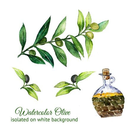 watercolor hand drawn olive branches with glass bottle isolated on white background. Scan of watercolor painting. Foto de archivo