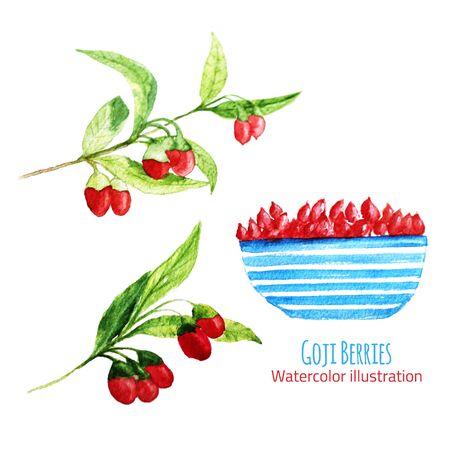 Waterverfillustratie van verse Goji (Wolfberries) Bessen met bladeren en takken op witte achtergrond. Voor achtergrond van de site, poster, kaartontwerp, banner Stockfoto