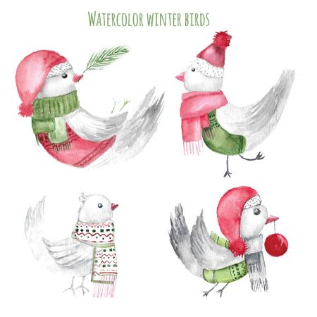 Winterbirds dell'acquerello su fondo bianco con sciarpe e cappelli. Animas simpatici cartoni animati per i saluti delle carte Archivio Fotografico - 91294909