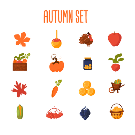 Set of Farming cartoon objects with leaves. pumpkin, harvest box, beetroot, corn, carrot. Ilustração