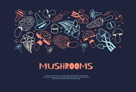 Mushroom hand drawn horizontal doodle banner with Isolated sketch Champignon, enokitake, oyster, chanterelle, shiitake. Use it for menu, banner, badge, product packaging