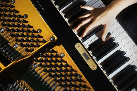 Piano music pianist hands playing. Musical instrument grand piano details with performer hand on white background Banco de Imagens - 16310751