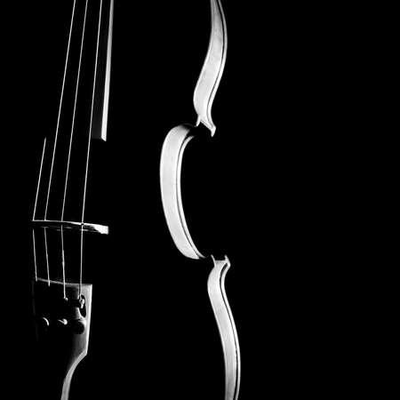 블랙에 바이올린 오케스트라 악기 실루엣 문자열의 근접 촬영