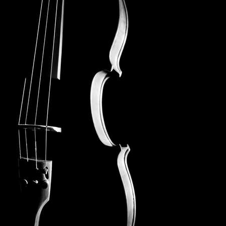 symphony orchestra: Violin orchestra musical instruments  Silhouette string closeup on black