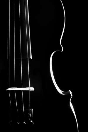 Violin orchestra musical instruments closeup isolated on black Banco de Imagens