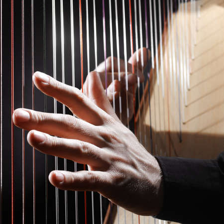 harp: Harp strings closeup hands. Harpist with Classical Music Instrument Stock Photo