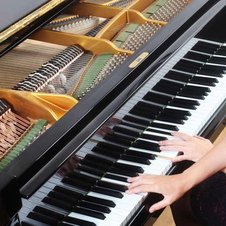 piano closeup: Grand Piano hands pianist playing piano closeup Musical instrument