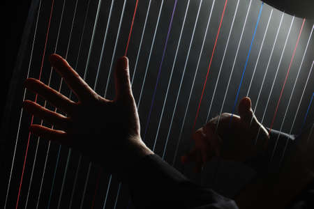 Harp player hands playing musical instruments