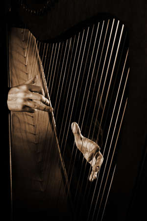 Harp strings closeup hands. Harpist with Classical Music Instrument 스톡 콘텐츠
