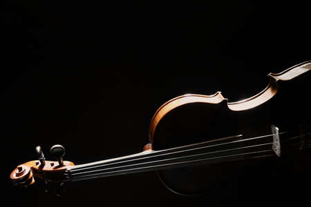 Violin orchestra music instrument isolated on black