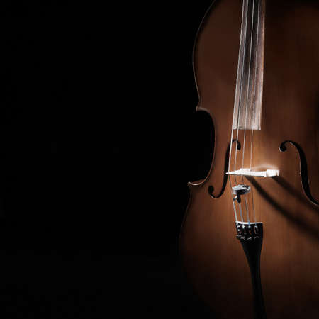 Cello close up. Violoncello orchestra musical instruments closeup isolated on black background