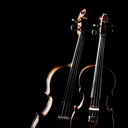 Violin isolated. Duet of two violins. Classical music instruments of orchestra. Violin and viola instrument isolated on black background