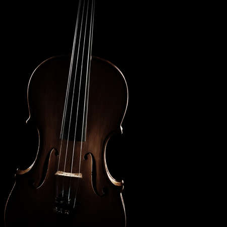 Violin orchestra music instrument closeup isolated on black background