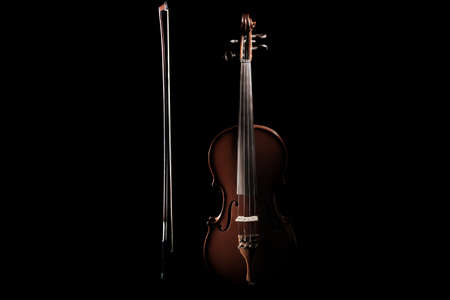 Violin musical instrument of orchestra.