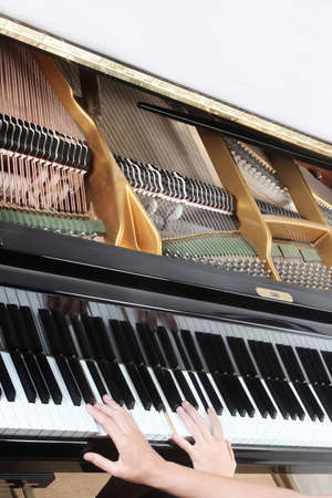 Piano player. Pianist hands playing grand piano keyboard closeup. Music instrument close up
