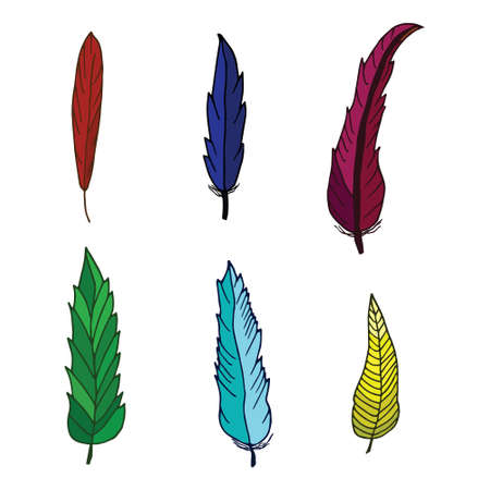 Set of bird colored feathers isolated on white background. Beautiful elements for decoration. Hand drawn feathers.