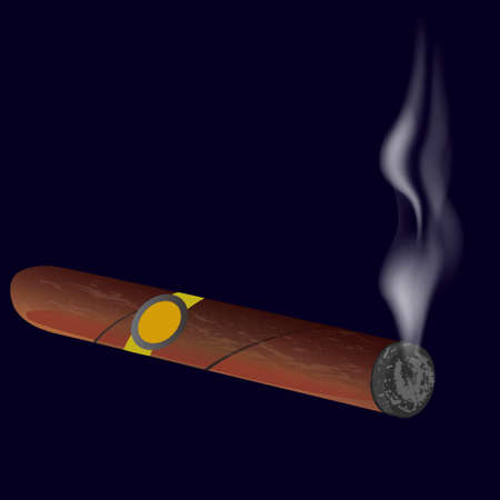smell of burning: Cigar with smoke isolated on black background. Vector illustration. Illustration