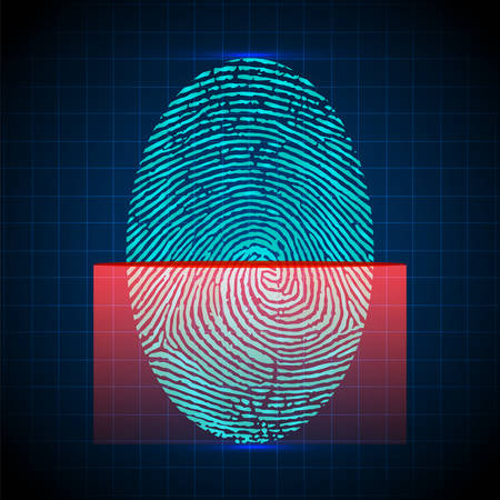 scanned: Fingerprint scanner, identification system. Digital security system, the access control. Vector illustration