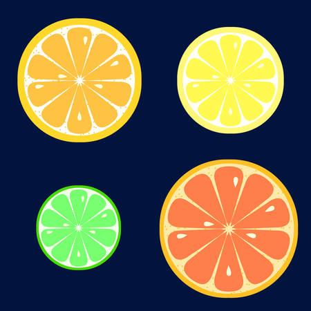 Set of slices of orange, lemon, lime, grapefruit on dark blue background. Flat style.